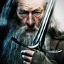 https://www.duolingo.com/...Gandalf...