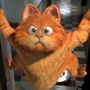 https://www.duolingo.com/profile/-Garfield-