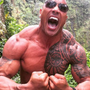 https://www.duolingo.com/profile/Dwayne__Johnson