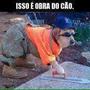 https://www.duolingo.com/Bruno916697