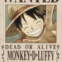 https://www.duolingo.com/MonkeyD.Luffy5.0