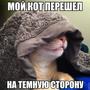 https://www.duolingo.com/Oleg413631