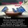 https://www.duolingo.com/SibelYavuz11