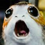 https://www.duolingo.com/profile/Starwars_Porg