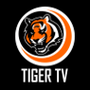 https://www.duolingo.com/profile/TigerTV.ru