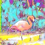 https://www.duolingo.com/profile/svenska_flamingo